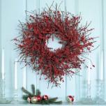 10-coronas-de-navidad-con-frutas-y-plantas-y-ramas-secas4